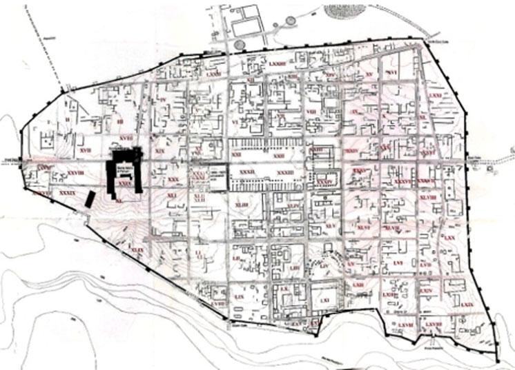 Plano de Falerii Novi, extraído de 'Falerii: A New Survey of the Walled Area, 2002.'. Investigaciones realizadas por el Departamento de Arqueología de la Universidad de Southampton. (Comune di Fabrica di Roma/CC BY SA 3.0)