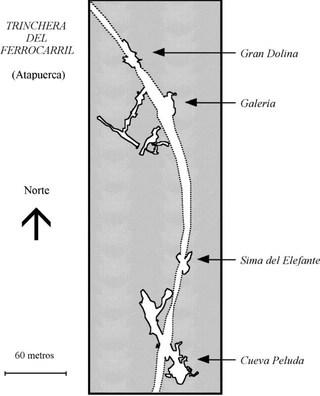 Plano esquemático de los yacimientos de la Trinchera del Ferrocarril, incluidos junto con otros yacimientos arqueológicos en el complejo kárstico de la Sierra de Atapuerca. En el nivel TD6 del yacimiento de la Gran Dolina fueron descubiertos los fósiles de la nueva especie Homo antecessor, datados en aproximadamente 1 millón de años y cuyos individuos, según los análisis más recientes, presentaban notables similitudes con los humanos modernos. (Public Domain)