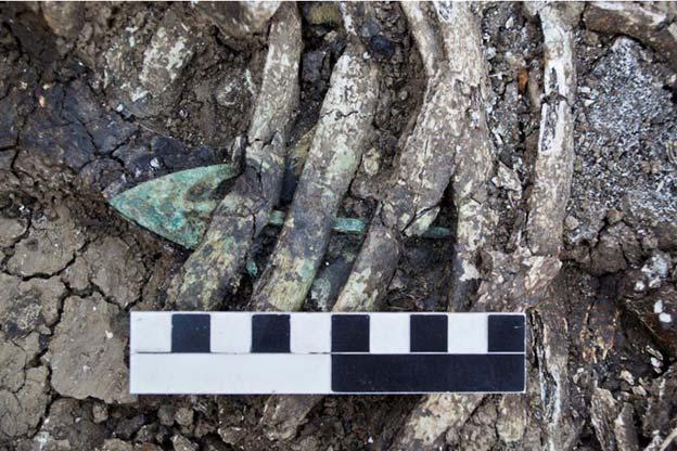 Punta de flecha hallada en las costillas de la joven enterrada. (Dimitri Narimanishvili)