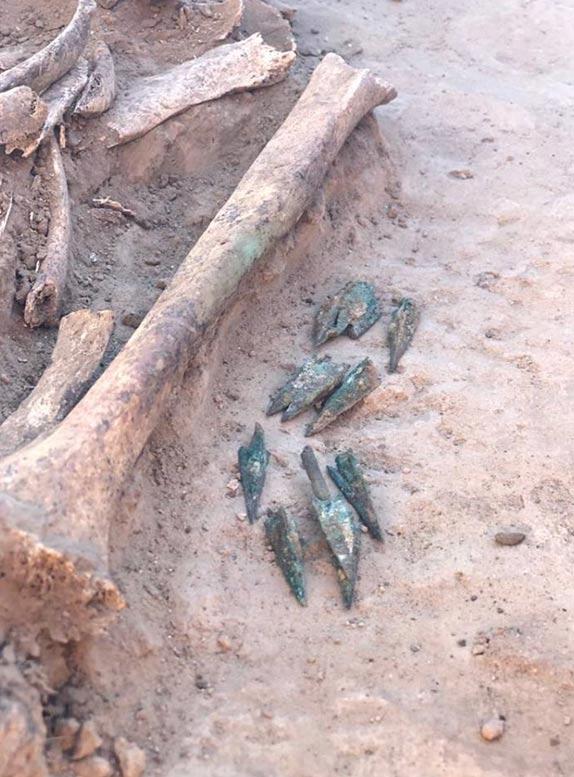 Se encontraron puntas de flecha junto a los restos óseos de esta mujer de la antigua nobleza escita. (Imagen: Mamia Gora)