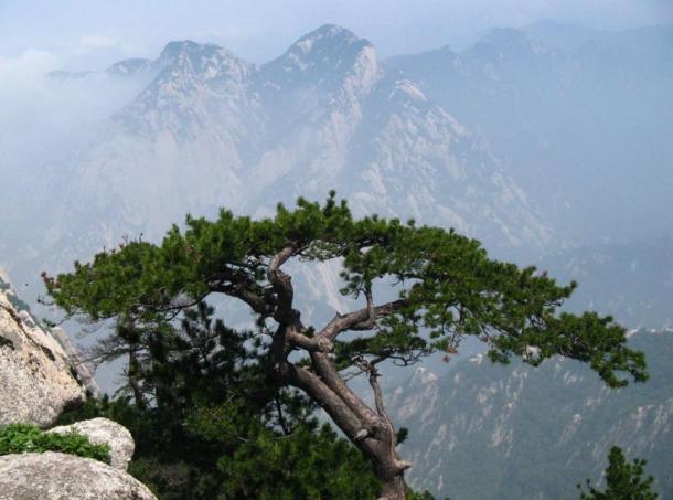 La cordillera de Qinling, en China (Wikipedia)