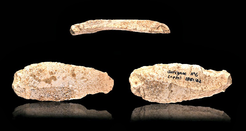 Rascador auriñaciense hallado en Aurignac, Francia. Museo de Toulouse. (Didier Descouens/CC BY-Sa 4.0)