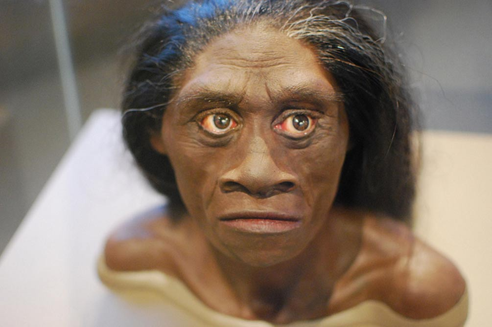Reconstrucción del Homo floresiensis (Flickr/CC BY 2.0)