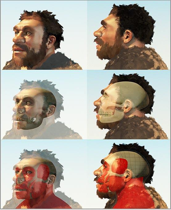 Reconstrucción forense de un Homo Neanderthalensis a partir de su cráneo, obra de Cicero Moraes (CC BY SA 3.0)
