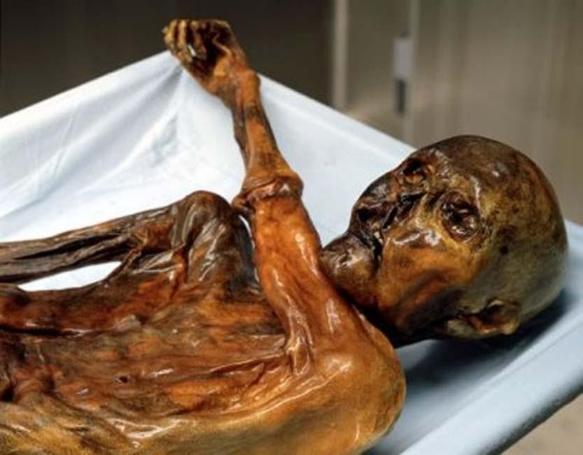 Uno de los mayores desafíos fue el de reconstruir el tracto vocal de Ötzi, considerando que la garganta se encontraba bloqueada por el brazo izquierdo. (Public Domain)