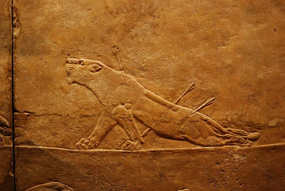 Relieve en el que se da caza a una leona, colecciones asirias del Museo Británico (Sala 10) (CC BY 2.0)