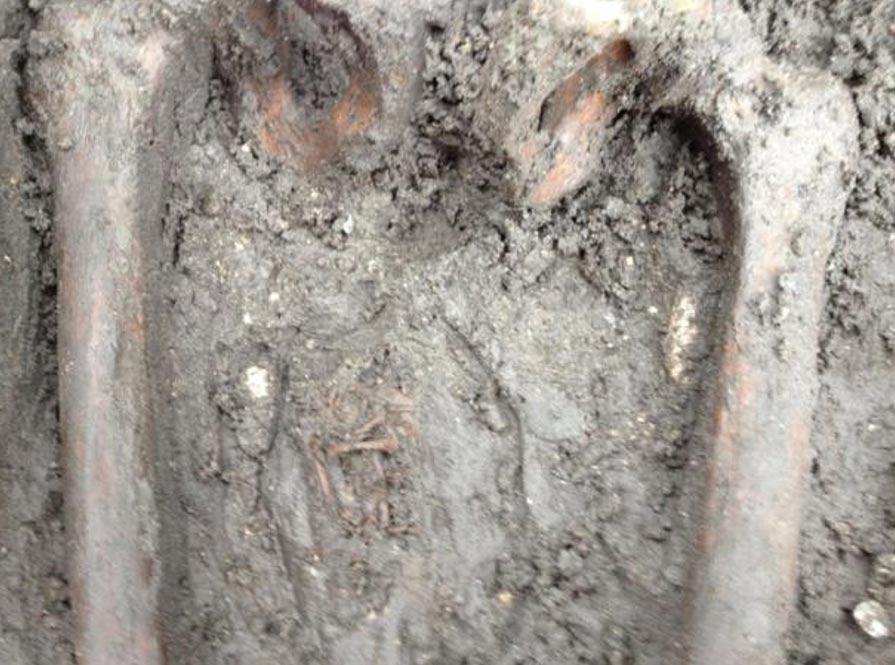 Se encontraron los restos de un feto entre los muslos de un esqueleto femenino. (Cerpen Horor)