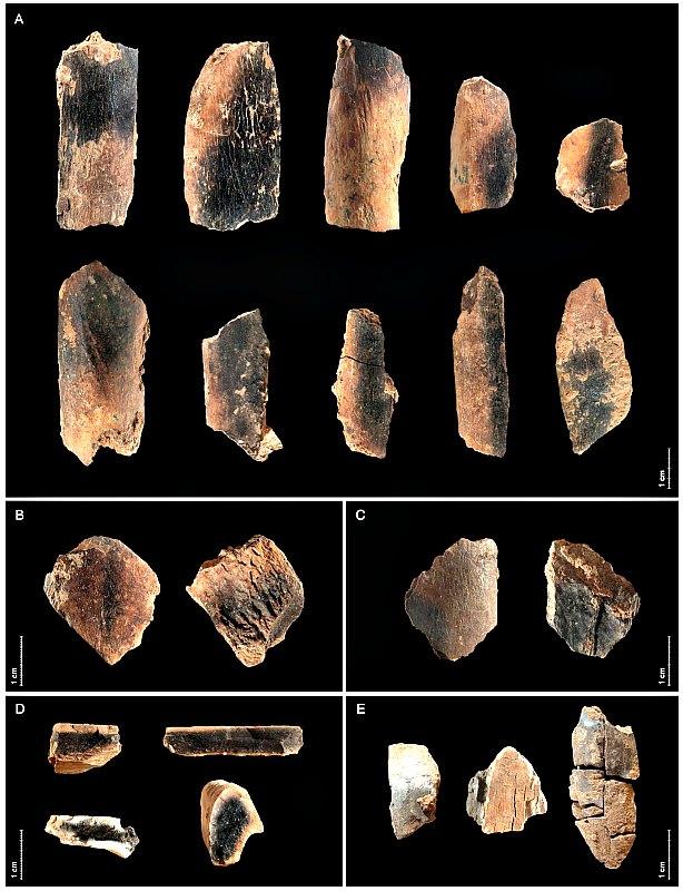 En la Cueva de Qesem se han encontrado numerosos restos óseos animales con signos claros de cremación. (Ruth Blasco – CC BY-SA 3.0)