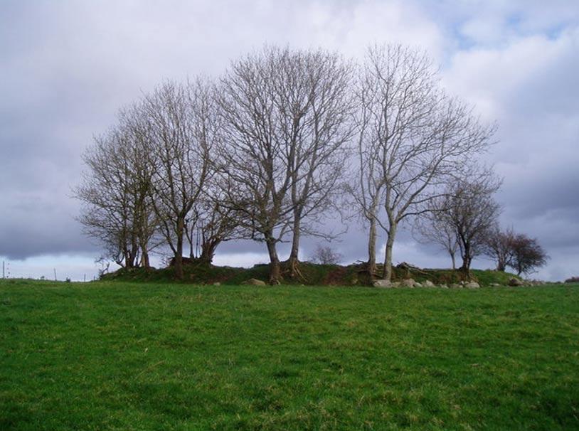 Fuerte circular en Cabragh, Irlanda. Estas construcciones son comunes en la campiña irlandesa. (Pamela Norrington/CC BY-SA 2.0)