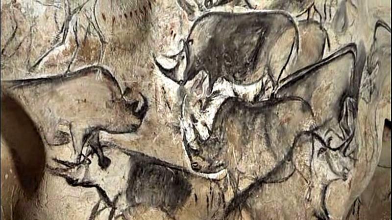 Pinturas de rinocerontes de la cueva Chauvet. (Public Domain)