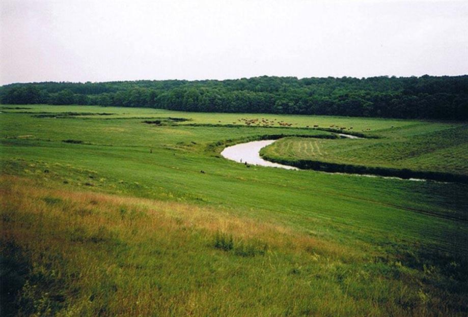 El río Tollense cerca de la localidad de Weltzin. (Public Domain)