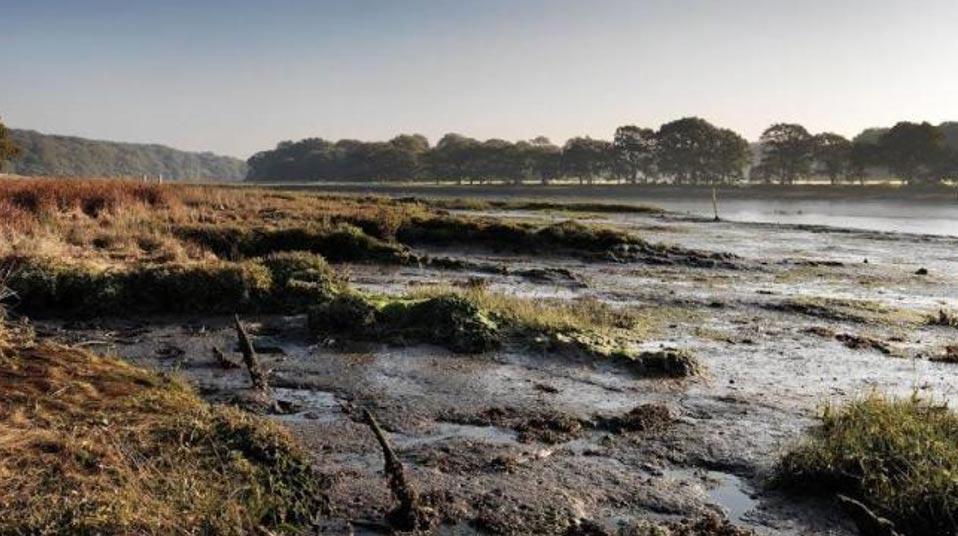 El río Hamble, en el que se cree que yacen los restos del Holy Gost o Holigost. Foto: Historic England