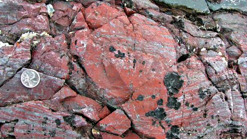 Rocas sobre las que aparecieron los fósiles en Quebec, Canadá. (Fotografía: ABC/Dominic Papineau)