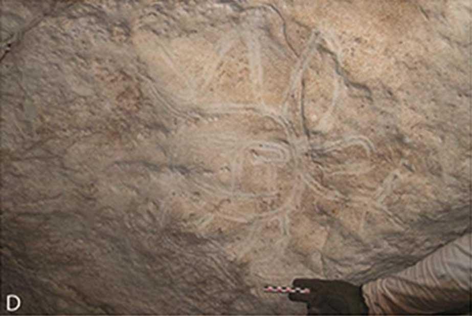 Acanaladuras trazadas con el dedo y zona de extracción sistemática (derecha) (Journal of Archaeological Science CC BY 4.0)