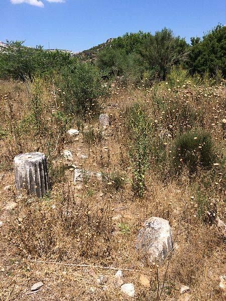 Ruinas de columnas acanaladas en el yacimiento arqueológico de Bargilia. (Hwhorwood/CC BY SA 4.0)