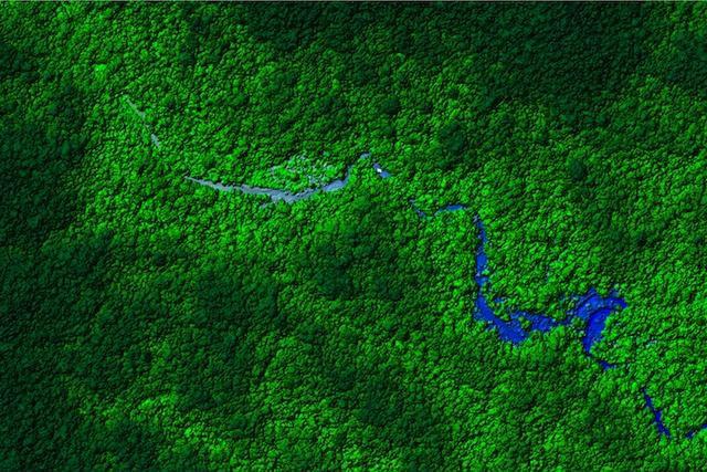 Las antiguas ruinas han sido halladas en la jungla de Honduras (en la imagen). Fotografía: DAR