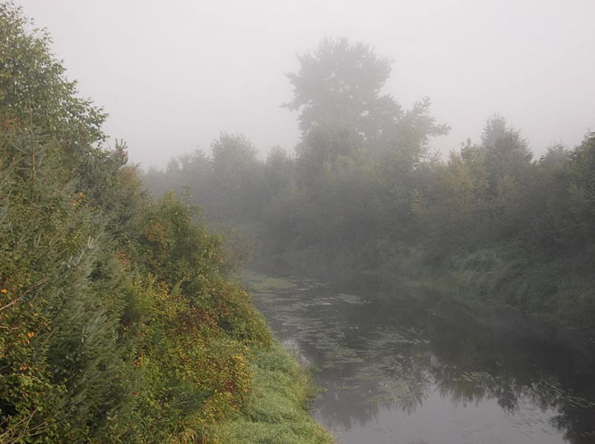 Vista del ría Sammamish en King County, Maryland; el Bear Creek es un afluente de este río.(Foto: Fenixfyre/Wikimedia Commons)