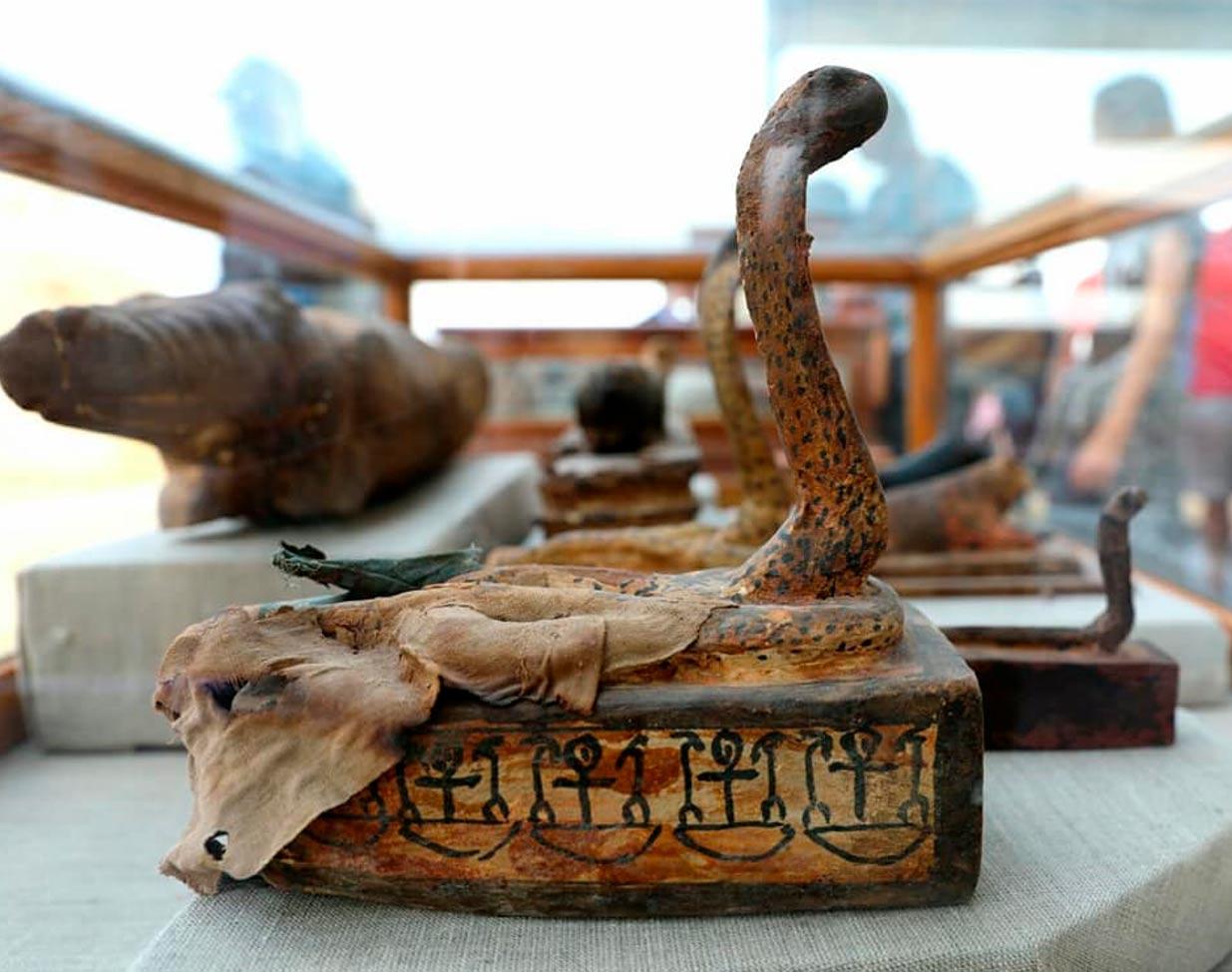 Este sarcófago con la figura de una cobra albergaba una serpiente momificada. Crédito: Ministerio de Antigüedades de Egipto