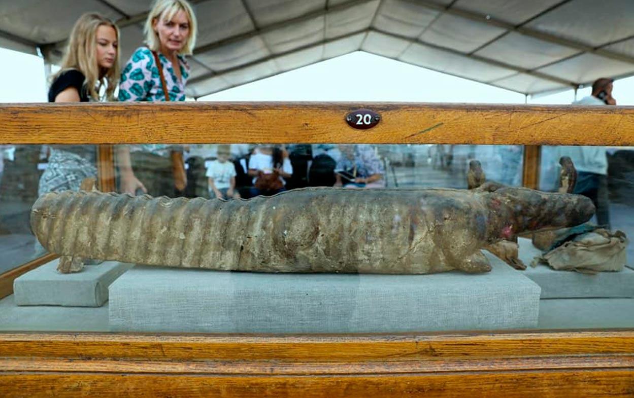 Sarcófago de cocodrilo hallado en el interior del complejo de tumbas. Crédito: Ministerio de Antigüedades de Egipto