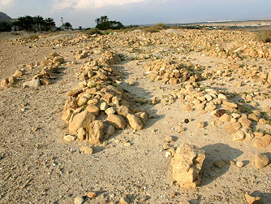 Sección del cementerio de Qumrán. (virtualqumran)