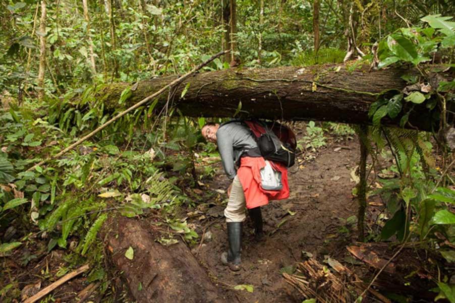 April Holloway en la selva amazónica. En la Amazonia, la vegetación es tan densa que puede ser difícil encontrar una planta en concreto. Plantar bosques medicinales hará que los remedios sean mucho más accesibles. Crédito: Ioannis Syrigos