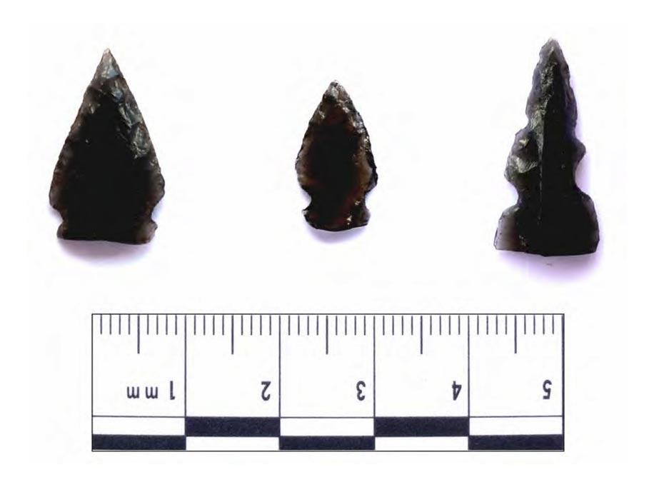 Afiladas puntas de flecha de vidrio volcánico (obsidiana) halladas en antiguos yacimientos de Guatemala. Se ha descubierto que dos de estas puntas de flecha presentan restos de sangre humana. Fotografía: Nathan Meissner