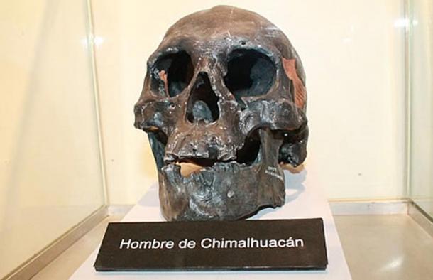 Cráneo del Hombre de Chimalhuacán, al Este de México (La Opcion)