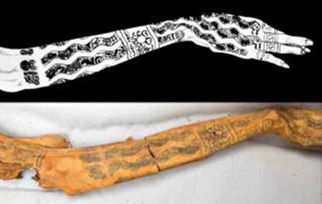 Tatuajes en el brazo de la Señora de Cao. (Mujeres Aborígenes: Mayas y Mochicas)