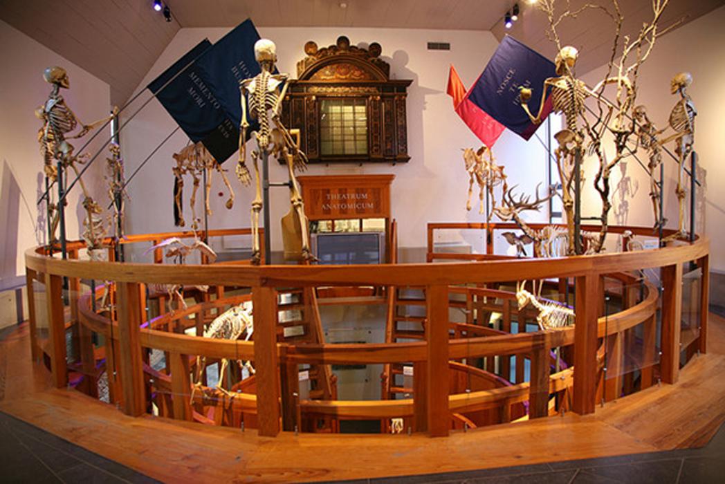 Museo Boerhaave – Teatro anatómico. Fuente: CC BY-SA 2.0
