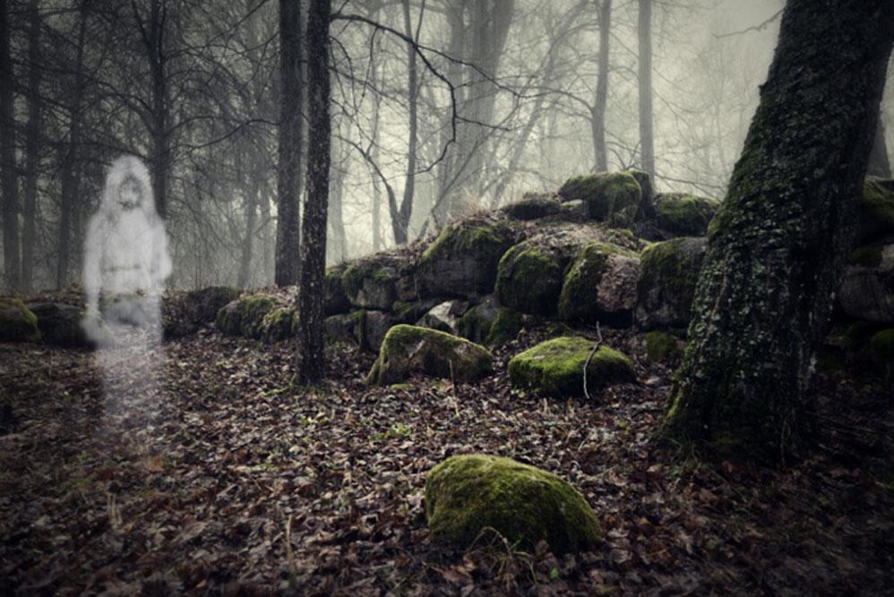 Cuando buscaban a un animal perdido, las mujeres escandinavas temían a los espíritus del bosque. (Vitalez/Adobe)