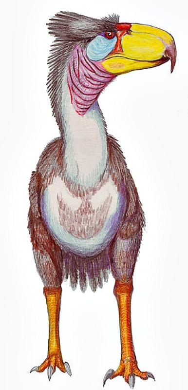 """Reconstrucción de un ejemplar de la especie Titanis walleri, una de las conocidas como """"aves terroríficas"""", ya extinguida. (Dmitry Bogdanov/GNU Free)"""