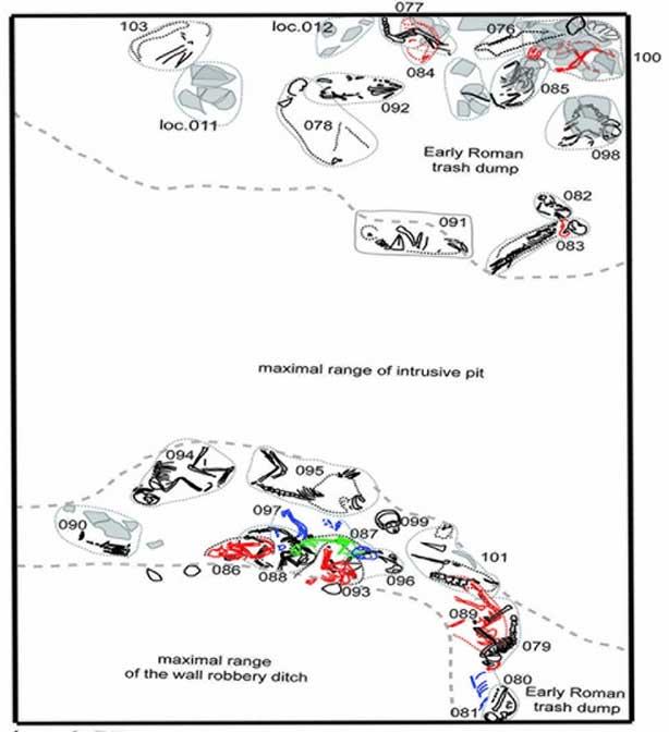 Dispersión de las tumbas de pequeños animales en una de las fosas excavadas. El estrato del antiguo vertedero está datado en el siglo II d. C. (dibujo realizado por P. Osypiński)