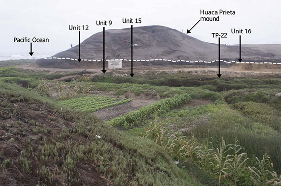 El túmulo de Huaca Prieta, situado sobre la Terraza de Sangamon (la superficie enterrada de la terraza, con depósitos culturales del Pleistoceno Tardío y principios del Holoceno, aparece indicada por la línea discontinua bajo el túmulo). Fotografía: ScienceAdvances
