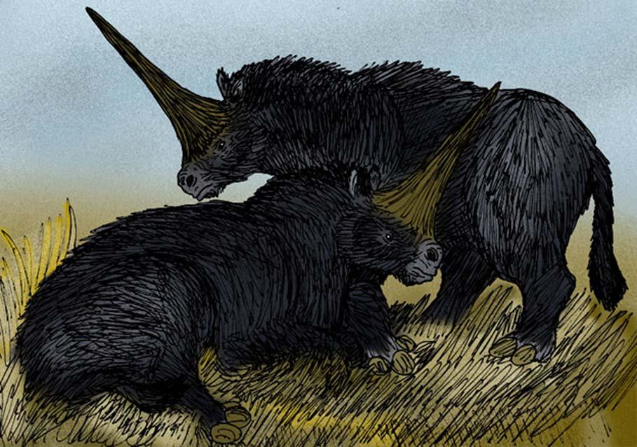 """Interpretación artística del antiguo rinoceronte apodado """"Unicornio Gigante"""", el Elasmotherium sibiricus de la Siberia del Pleistoceno. (Apokryltaros/CC BY SA 3.0)"""