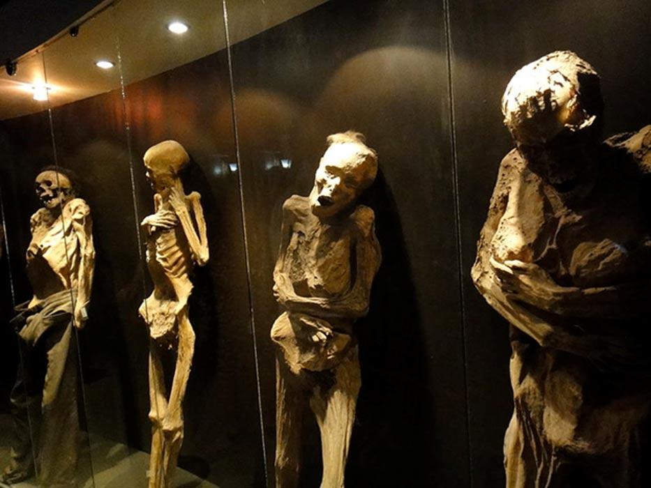 Algunas de las momias del museo de Guanajuato. (CC BY SA 4.0)