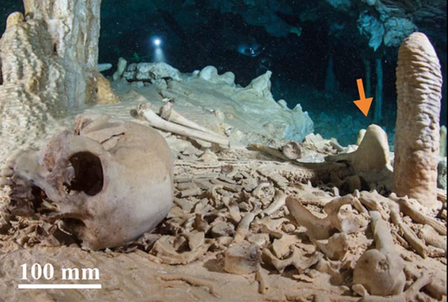 El yacimiento arqueológico de Chan Hol II antes del saqueo. La flecha señala la estalagmita del CH-7 analizada por los investigadores. (Fotografía: Nick Poole y Thomas Spamberg)