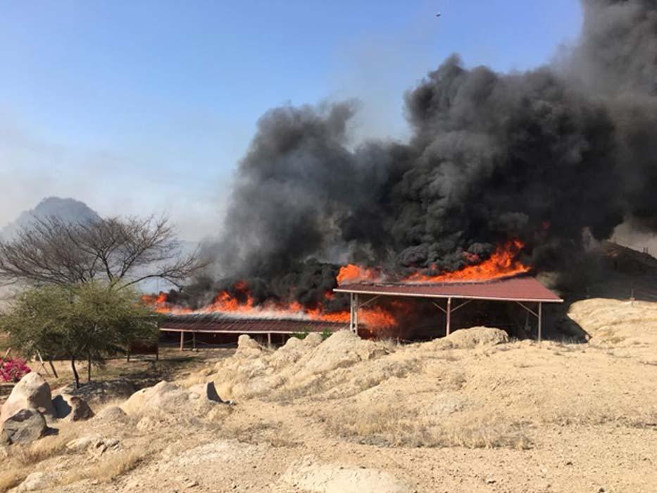 El yacimiento arqueológico de Ventarrón es consumido por las llamas. (Ignacio Alva Meneses)