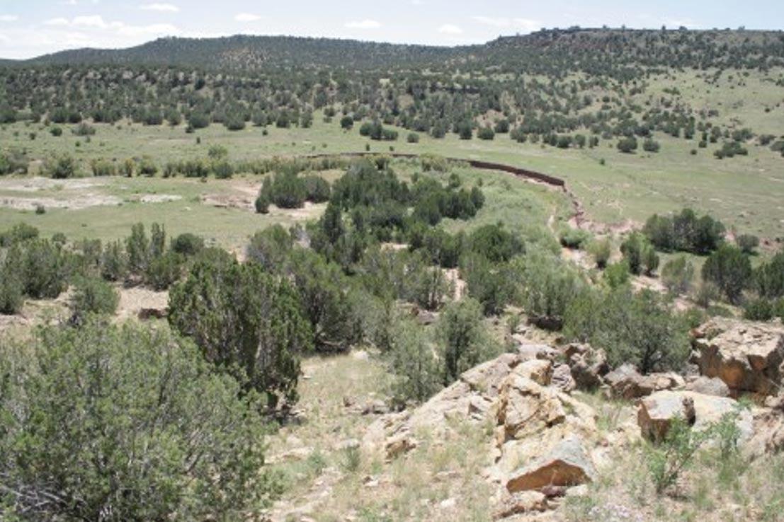 El yacimiento de petroglifos de Arizona en lo que siempre fue, y a día de hoy sigue siendo, un rancho de propiedad privada a kilómetros de distancia de la carretera o acceso público más cercanos. (Cortesía de John Ruskamp)
