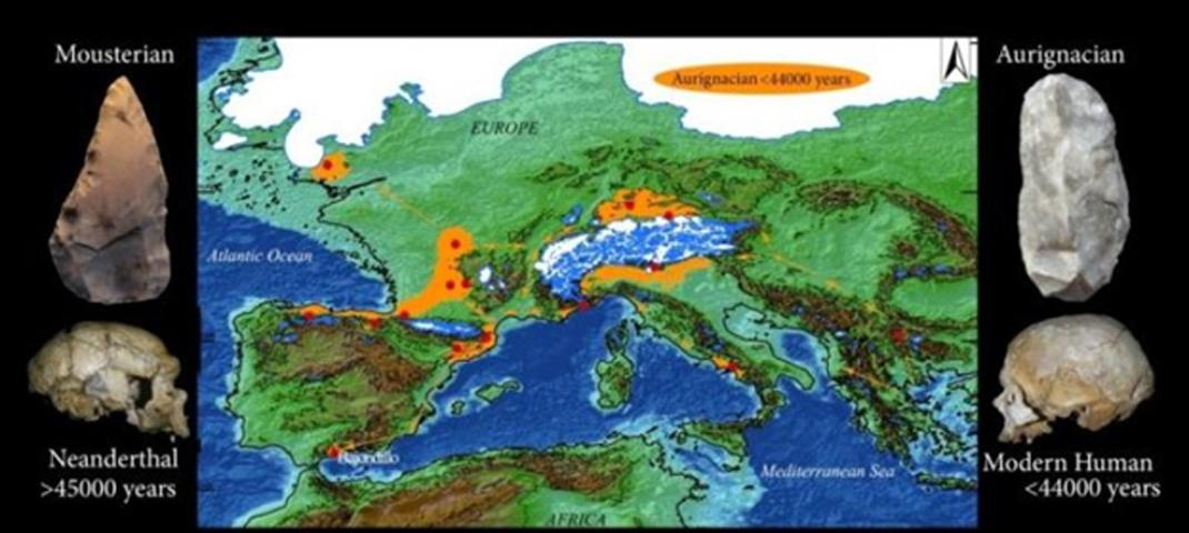 Yacimientos arqueológicos seleccionados de Europa occidental con industrias auriñacienses cuya antigüedad potencial o confirmada es mayor de 42.000 años, incluida la cueva del Bajondillo (España). Las flechas naranjas indican posibles rutas de expansión por Europa con un nivel del mar bajo. Las imágenes de la izquierda muestran un cráneo neandertal (La Chapelle-aux-Saints, Francia) y una herramienta musteriense recuperada en la cueva del Bajondillo. A la derecha, las imágenes muestran un cráneo de humano moderno (Abri-Cro-Magnon, Francia) y una herramienta auriñaciense recuperada también en la cueva del Bajondillo. (Universidad de Sevilla)