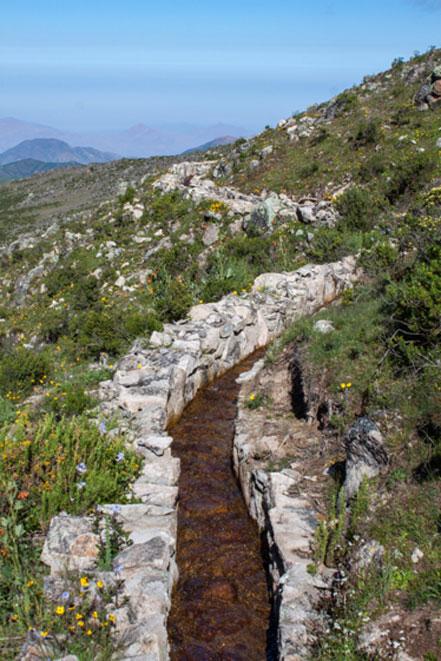Un canal de desviación como parte del sistema de infiltración pre-inca durante la estación húmeda. Los canales como este desvían el agua durante la estación húmeda a zonas de alta permeabilidad. El agua se almacena en los suelos y está disponible durante la estación seca. Imagen: Musuq Briceño, CONDESAN, 2012.
