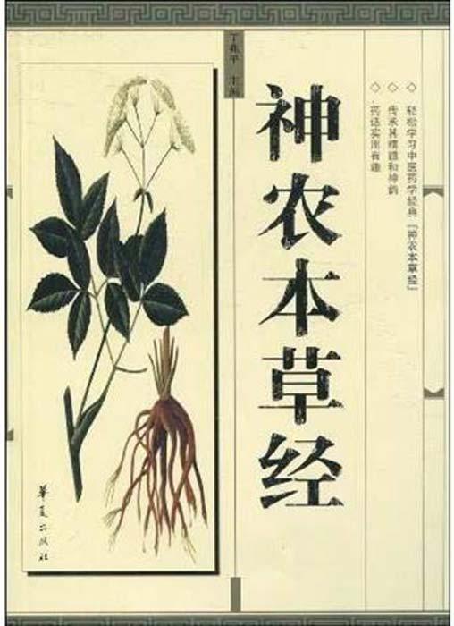 Una página del Shennong Bencaojing, un texto tradicional para la medicina china antigua, como la menta medicinal. (Pancrat / CC BY-SA 3.0)