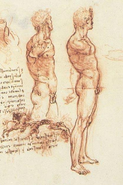 'Anatomía de un desnudo masculino' de Leonardo da Vinci. (Dominio público)