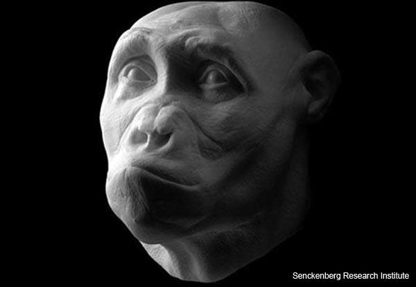 ancient-hominids-reconstruction-2.jpg