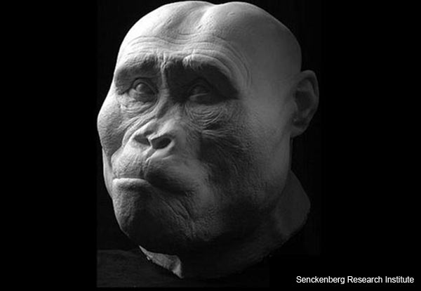 ancient-hominids-reconstruction-2.jpg