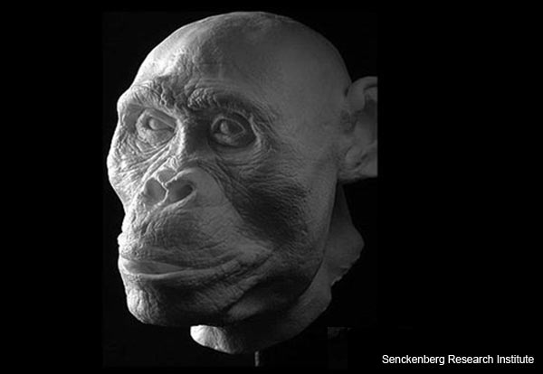 ancient-hominids-reconstruction-4.jpg