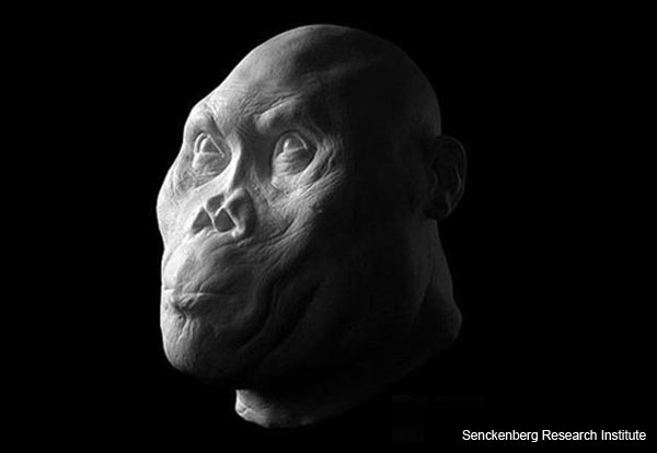ancient-hominids-reconstruction-5.jpg
