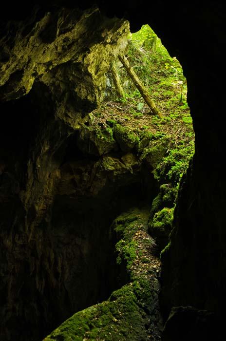 Banat Cave alberga algunos de los tesoros escondidos de Rumania. (anepetkovic / Adobe)