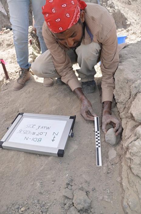 Blade Engda, de la Universidad de Poitiers, levanta un artefacto de un sedimento de 2,6 millones de años, exponiendo una huella del artefacto en la superficie antigua debajo. (David R. Braun)