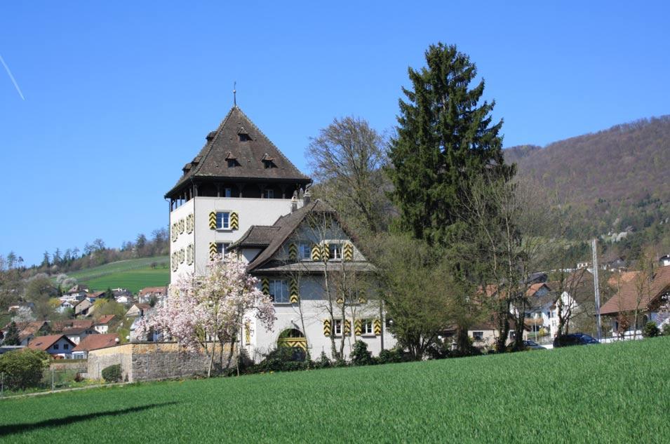 El hallazgo tuvo lugar en el pintoresco cantón de Aargau, al norte de Suiza. (Public Domain)
