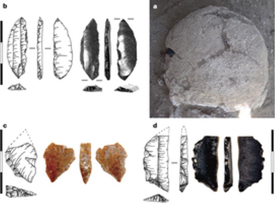 a. Cráneo de Nataruk tal como fue descubierto, con una cortante hoja de obsidiana incrustada en su hueso parietal izquierdo. b, detalle de la hoja de obsidiana, con la marca del impacto visible en la punta. c, d, Microlitos hallados en el interior del cuerpo. (Mirazón Lahr et al.)